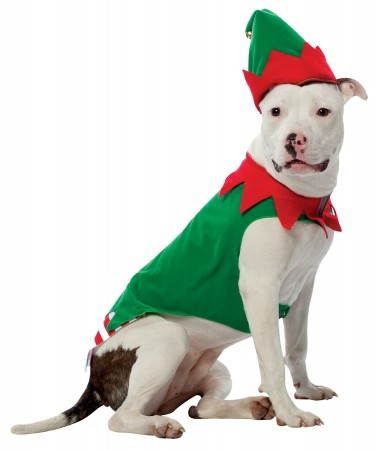 Elf Pet Costume BUY