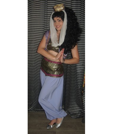 Purple Arabian Princess ADULT HIRE