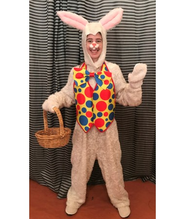 Easter Bunny #20 ADULT HIRE