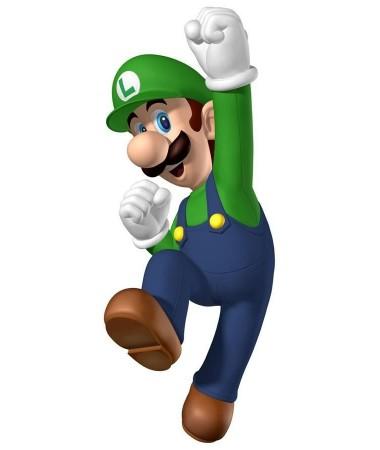 Luigi #4 ADULT HIRE